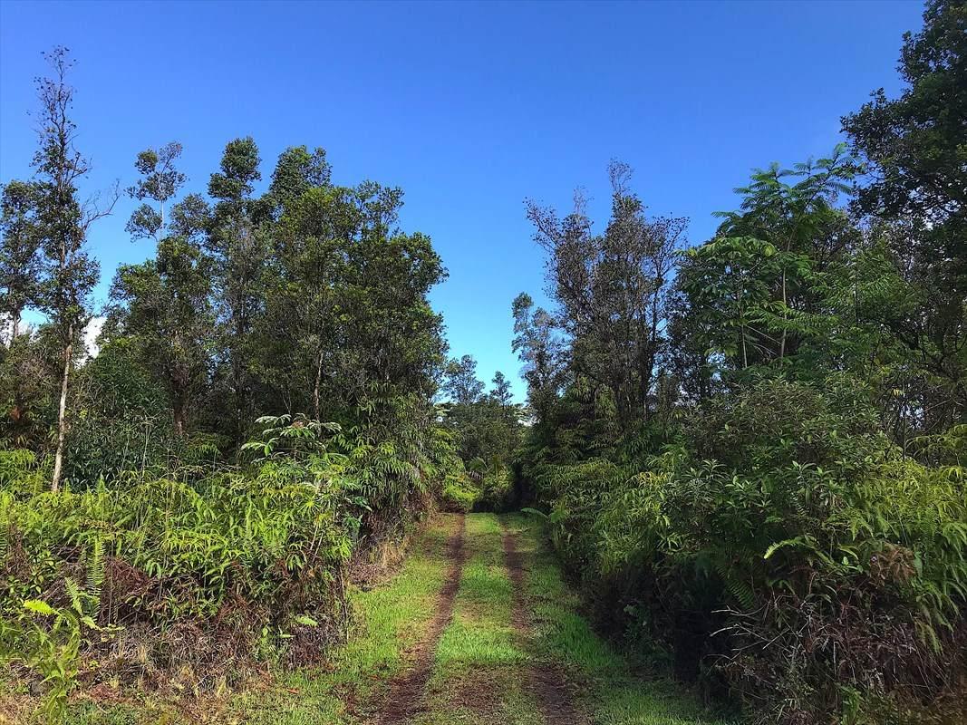 https://bt-photos.global.ssl.fastly.net/hawaii/orig_boomver_2_639990-2.jpg