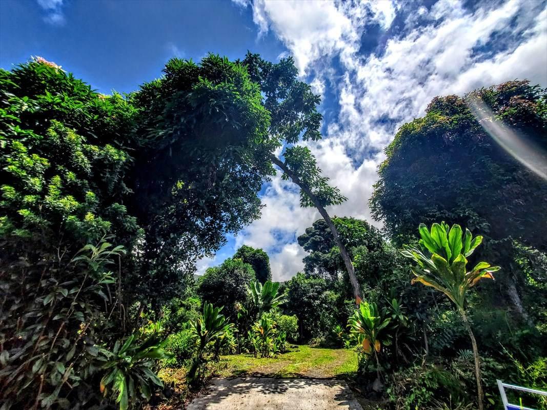 https://bt-photos.global.ssl.fastly.net/hawaii/orig_boomver_3_642294-2.jpg