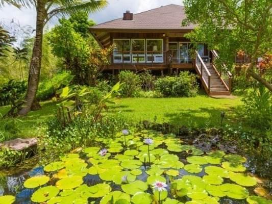 6242-A Kahiliholo Rd, Kilauea, HI 96722 (MLS #643716) :: Aloha Kona Realty, Inc.