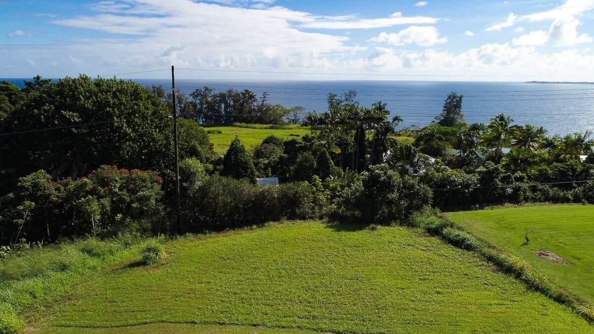 https://bt-photos.global.ssl.fastly.net/hawaii/orig_boomver_2_644308-2.jpg