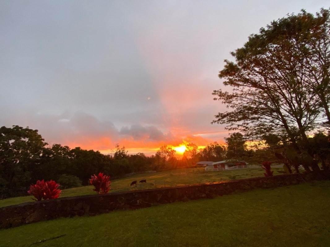 https://bt-photos.global.ssl.fastly.net/hawaii/orig_boomver_3_644506-2.jpg
