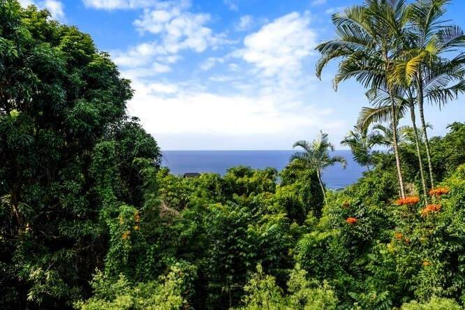 https://bt-photos.global.ssl.fastly.net/hawaii/orig_boomver_2_646531-2.jpg