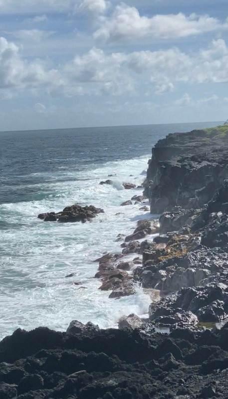 Government Beach Rd, Pahoa, HI 96778 (MLS #647500) :: Aloha Kona Realty, Inc.
