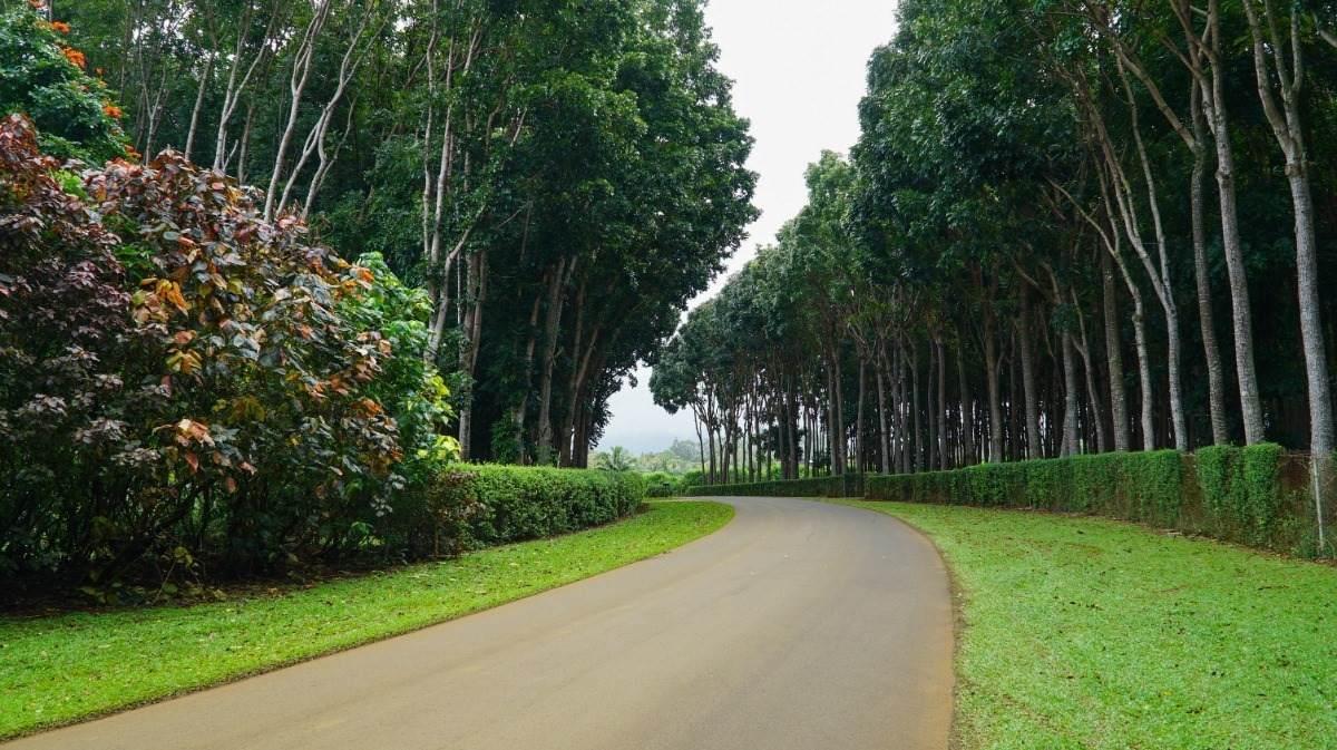 https://bt-photos.global.ssl.fastly.net/hawaii/orig_boomver_2_647902-2.jpg