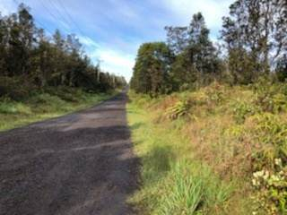 Kaleponi Dr, Volcano, HI 96785 (MLS #648235) :: Aloha Kona Realty, Inc.