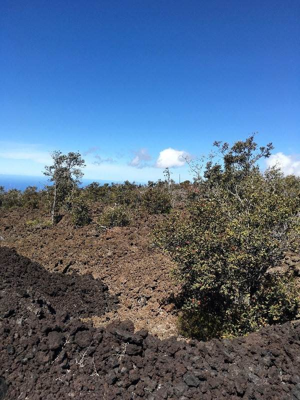 https://bt-photos.global.ssl.fastly.net/hawaii/orig_boomver_2_648973-2.jpg