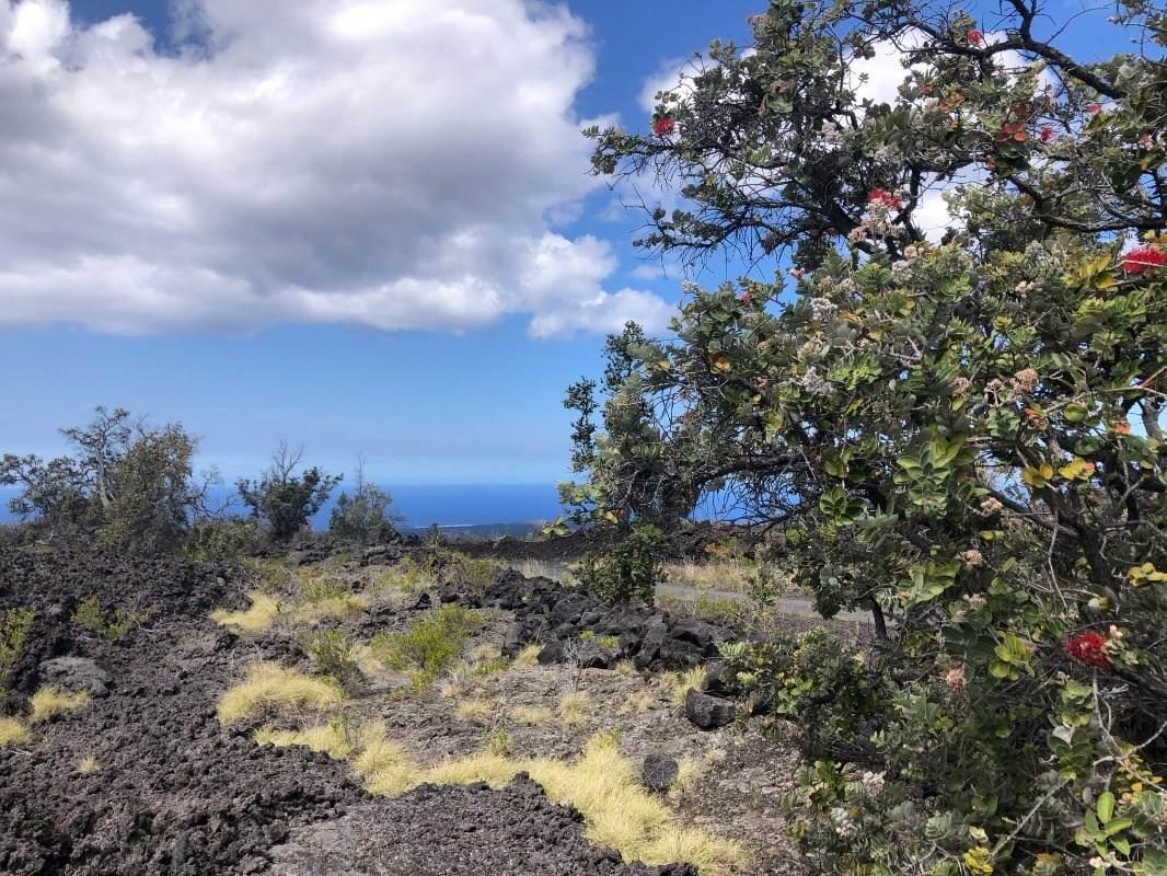 https://bt-photos.global.ssl.fastly.net/hawaii/orig_boomver_4_650051-2.jpg