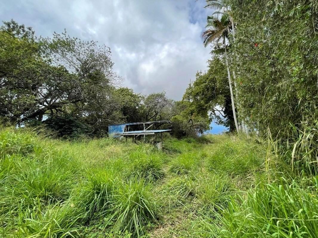 https://bt-photos.global.ssl.fastly.net/hawaii/orig_boomver_2_650463-2.jpg