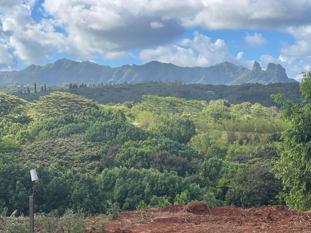 https://bt-photos.global.ssl.fastly.net/hawaii/orig_boomver_2_651494-2.jpg