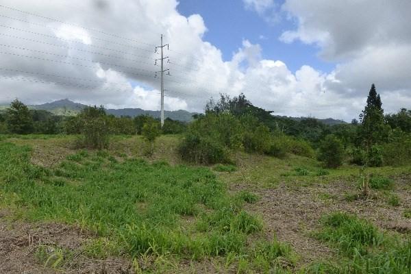 Puu Rd, Kalaheo, HI 96741 (MLS #268967) :: Aloha Kona Realty, Inc.