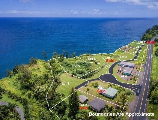 Pali Ku Place, Ninole, HI 96773 (MLS #296319) :: Elite Pacific Properties