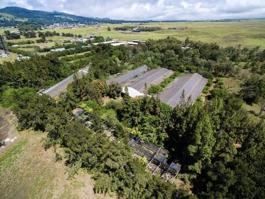 Mamalahoa Hwy, Kamuela, HI 96743 (MLS #299638) :: Elite Pacific Properties