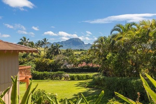 2370 Hoohu Rd, Koloa, HI 96756 (MLS #604326) :: Aloha Kona Realty, Inc.