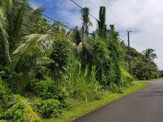 Waiopae Rd Lot 210, Pahoa, HI 96778 (MLS #609432) :: Elite Pacific Properties