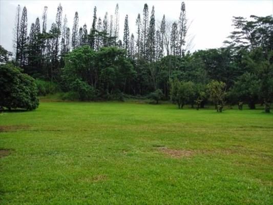 15-3106 Halelo Pl, Pahoa, HI 96778 (MLS #609496) :: Aloha Kona Realty, Inc.