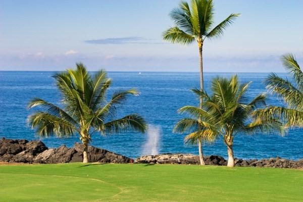 78-7190 Kaleiopapa St, Kailua-Kona, HI 96740 (MLS #611721) :: Aloha Kona Realty, Inc.