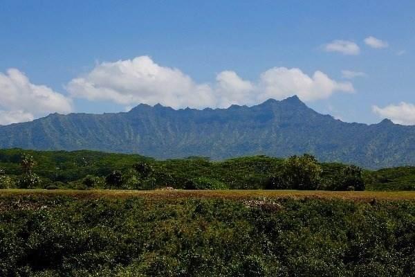 https://bt-photos.global.ssl.fastly.net/hawaii/orig_boomver_2_636196-2.jpg