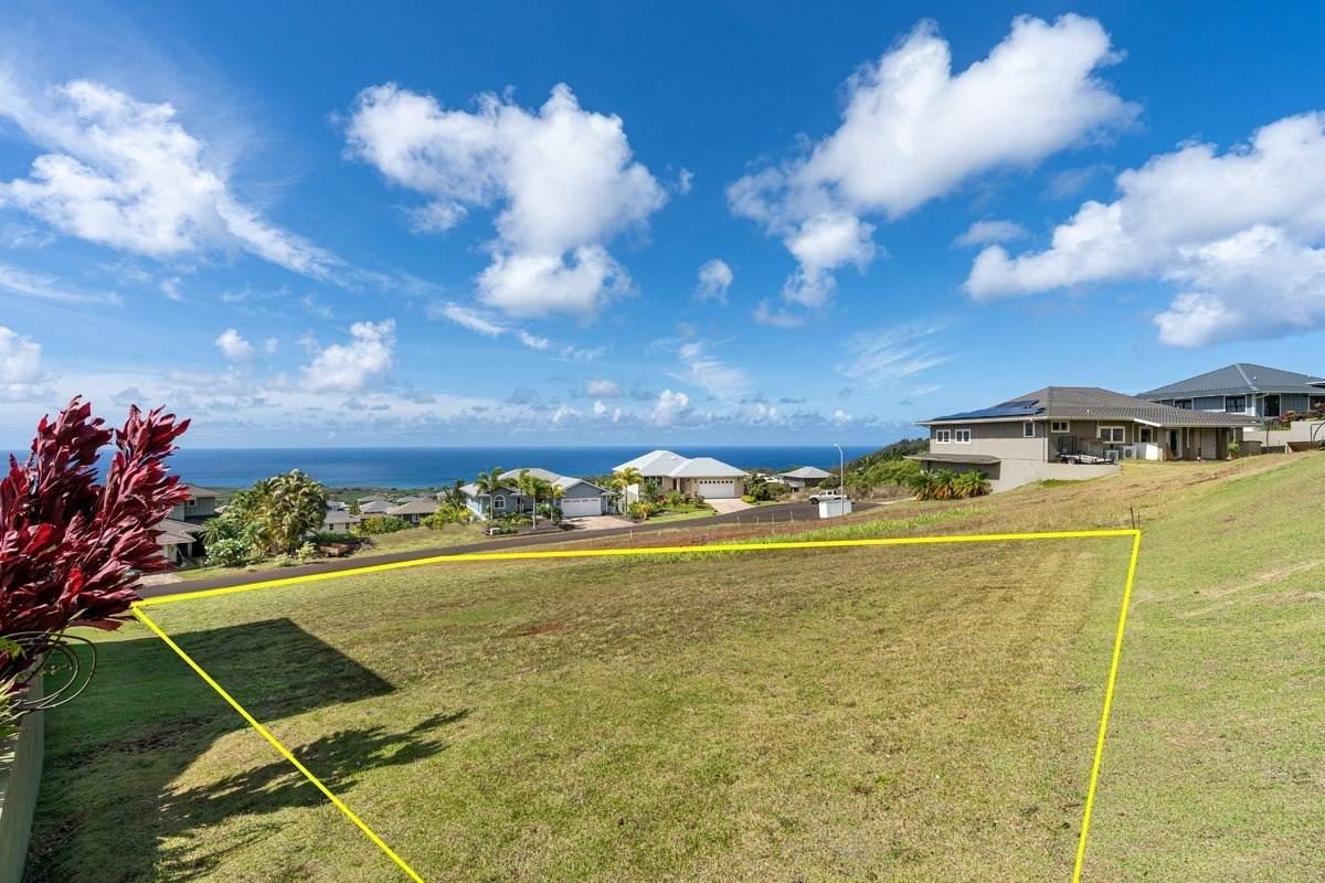1166 Lani Nuu St - Photo 1