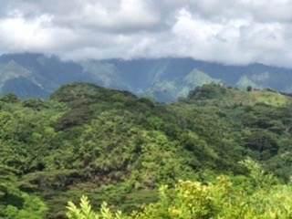 https://bt-photos.global.ssl.fastly.net/hawaii/orig_boomver_3_640758-2.jpg