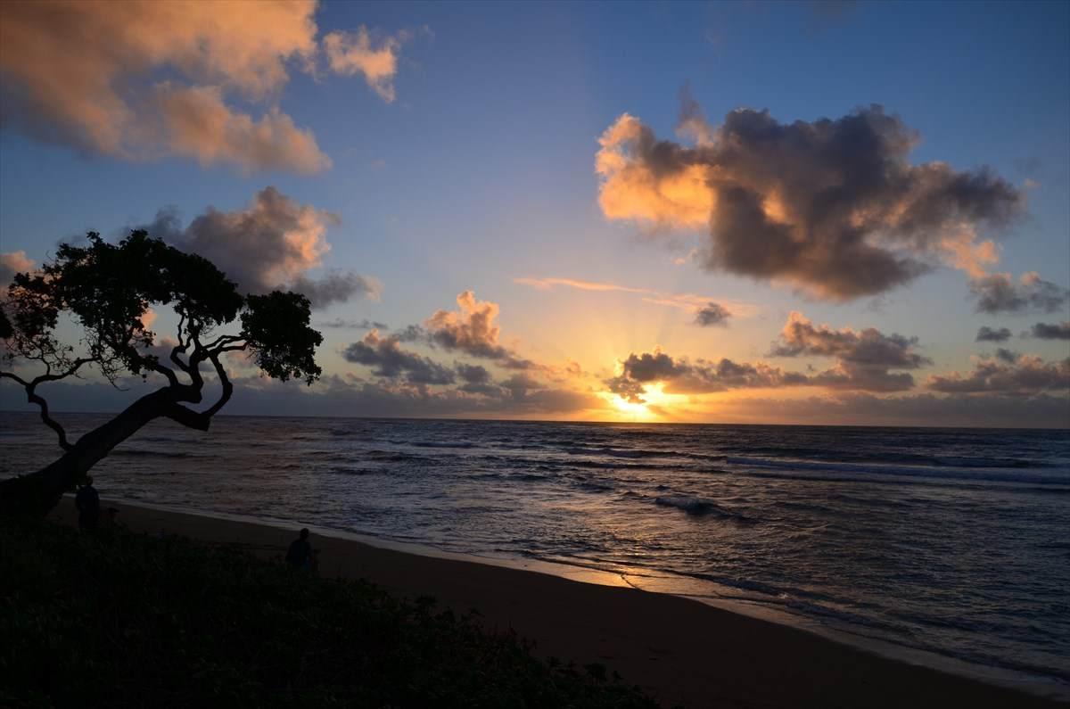 https://bt-photos.global.ssl.fastly.net/hawaii/orig_boomver_2_642106-2.jpg