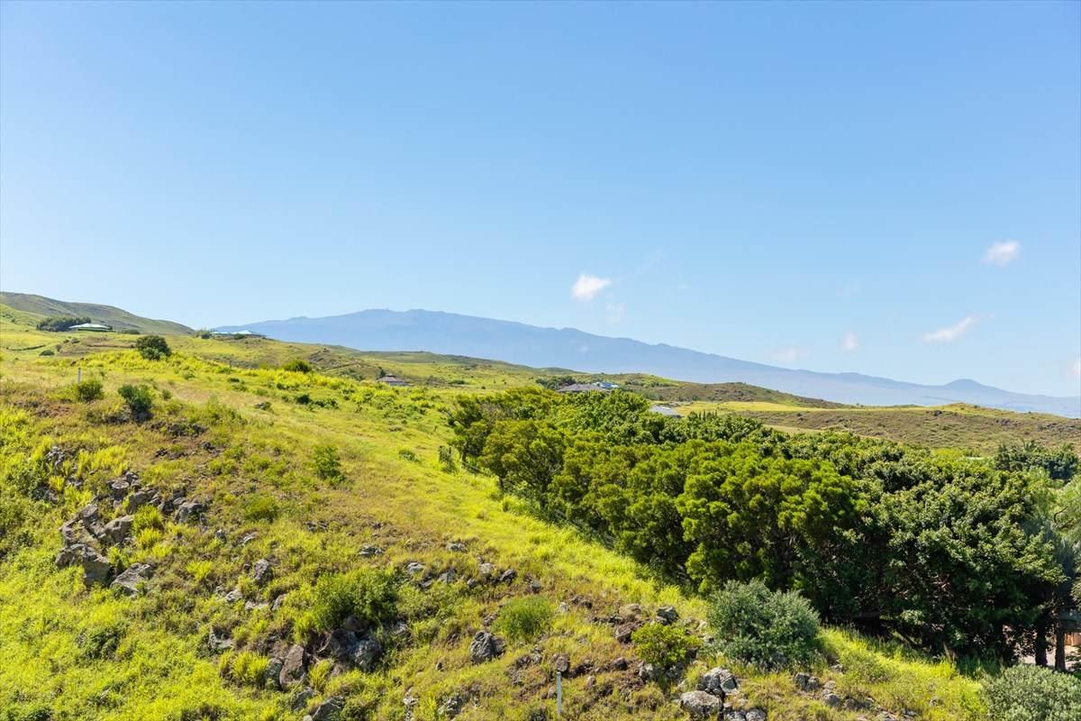 https://bt-photos.global.ssl.fastly.net/hawaii/orig_boomver_3_642942-2.jpg