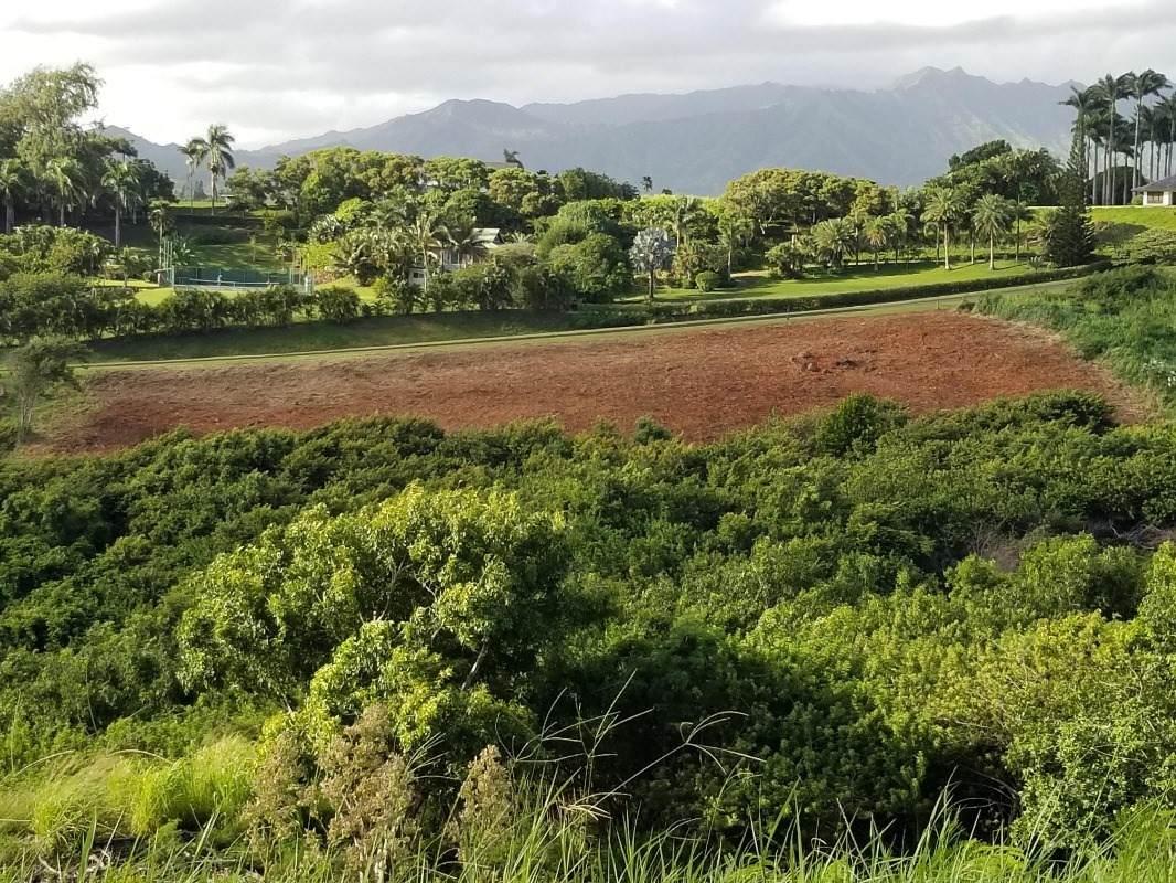https://bt-photos.global.ssl.fastly.net/hawaii/orig_boomver_2_643257-2.jpg