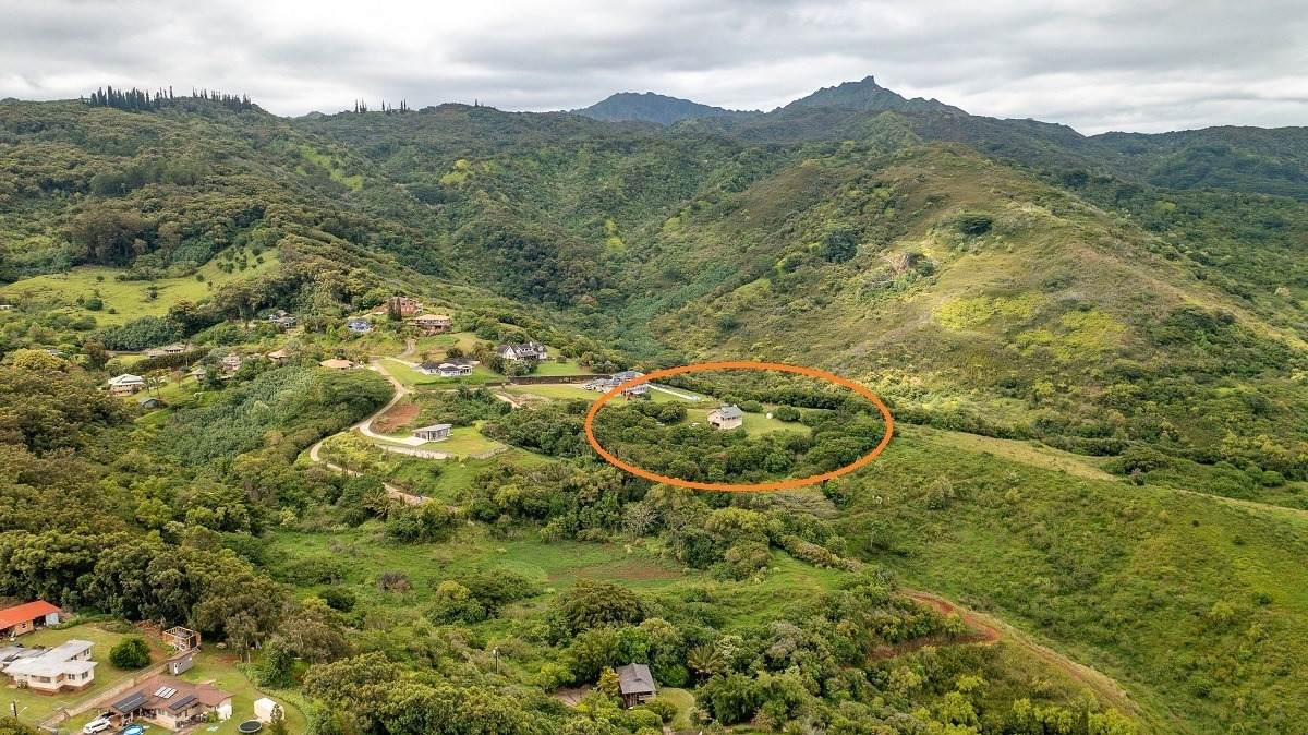 5495-A Puulima Rd - Photo 1