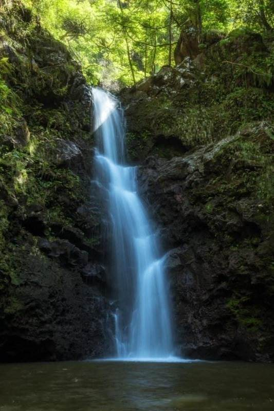 https://bt-photos.global.ssl.fastly.net/hawaii/orig_boomver_3_653878-2.jpg