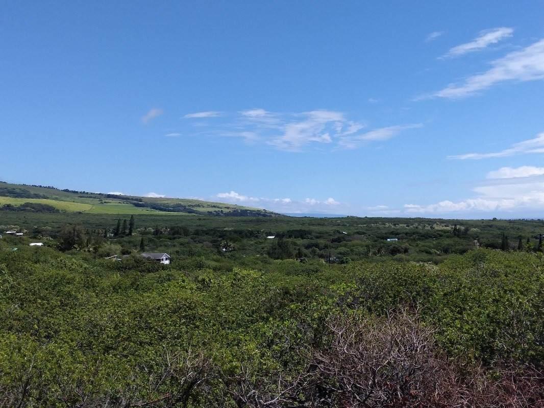 https://bt-photos.global.ssl.fastly.net/hawaii/orig_boomver_2_653932-2.jpg