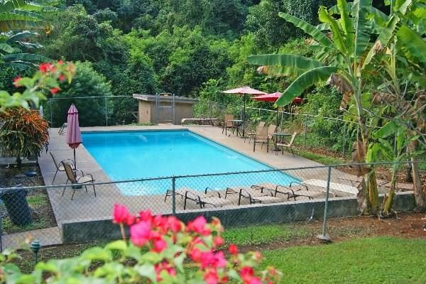 4701 Kawaihau Rd, Kapaa, HI 96746 (MLS #293041) :: Kauai Exclusive Realty