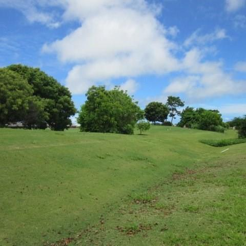 Address Not Published, Lihue, HI 96766 (MLS #619431) :: Song Real Estate Team | LUVA Real Estate