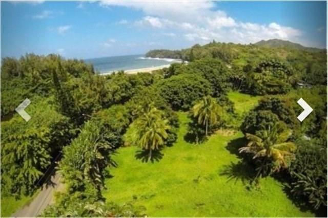 5-6657 Kuhio Hwy, Wainiha, HI 96714 (MLS #621560) :: Elite Pacific Properties