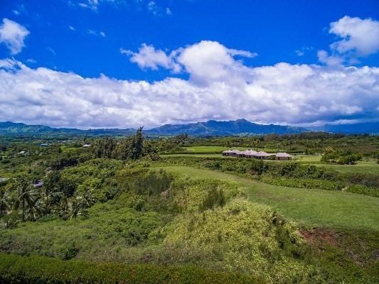 Seacliff Lot #13, Kilauea, HI 96754 (MLS #608242) :: Elite Pacific Properties