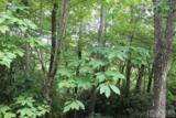 16 Whitewater Ridge Road - Photo 1