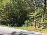 Lot 224 Rainbow Falls Trail - Photo 1