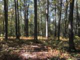 Lot 68D Rye Mountain Drive - Photo 1