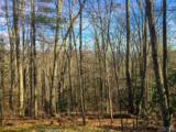 Lot 18 Piney Knob Trail - Photo 4