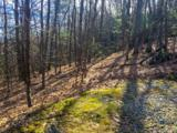 Lot 18 Piney Knob Trail - Photo 6
