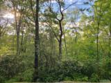 Lot 58 Horseshoe Bend Lane - Photo 11