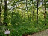 Lot 58 Horseshoe Bend Lane - Photo 6