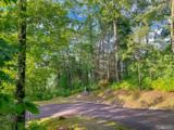 Lot 58 Horseshoe Bend Lane - Photo 8