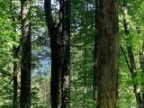 Lot 187 Hunters Mountain Drive - Photo 26