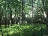 Lot 9 Blackberry Trail - Photo 2