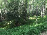 Lot 9 Blackberry Trail - Photo 3