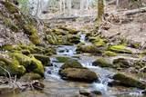 580 Spike Moss Road - Photo 1