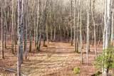 Lot 104 Crippled Oak Trail - Photo 4