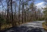 Off Whiteside Mountain Road - Photo 6