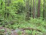 TBD Gusty Trail - Photo 1