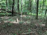 Lot 6 Forestland Rd. - Photo 7