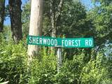 TBD Sherwood Forest Road - Photo 3